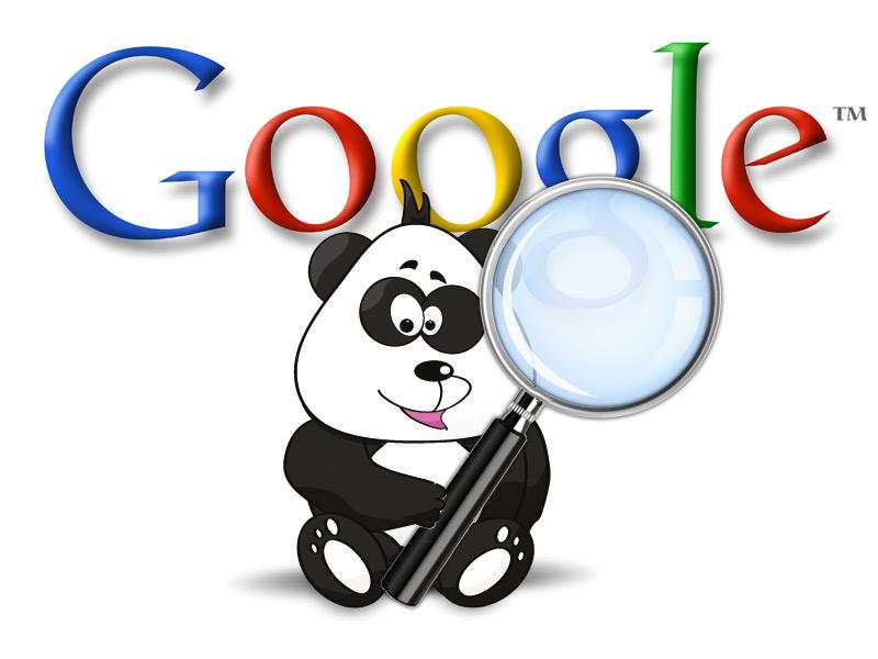 Atualização do google panda versão 4.2